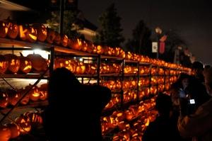 Pumpkin festival