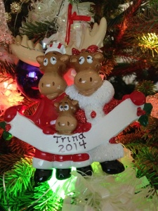 """Trina's"" Christmas ornament, handmade by the Wilkins... because she loves Venison!"